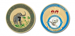 436 Squadron CO's Coin